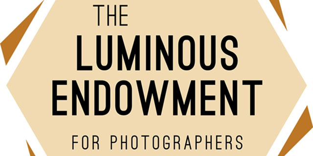 The Luminous Endowment Logo